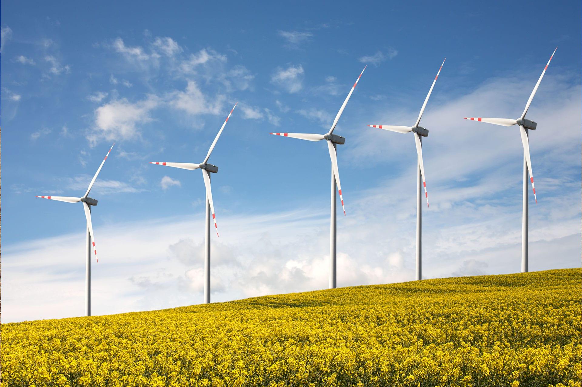 Hengel Transportes - Brasil é o 5º maior em energias renováveis